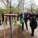 Das Angießen des gepflanzten Baumes übernahmen Landrat des Landkreises Mittelsachsen, Matthias Damm und Landtagsabgeordnete Iris Firmenich.
